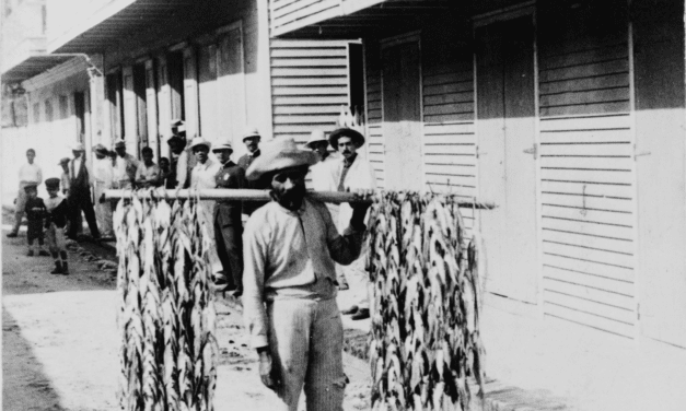 Fisherman selling his catch in Aguadilla, Puerto Rico, 1900
