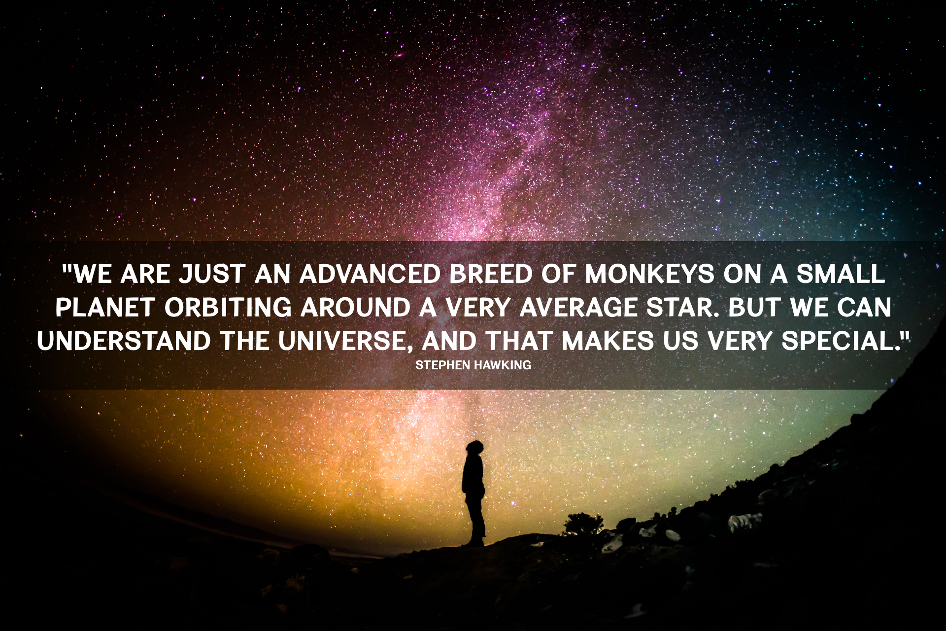 stephen-hawking-monkey-universe-quote-lg