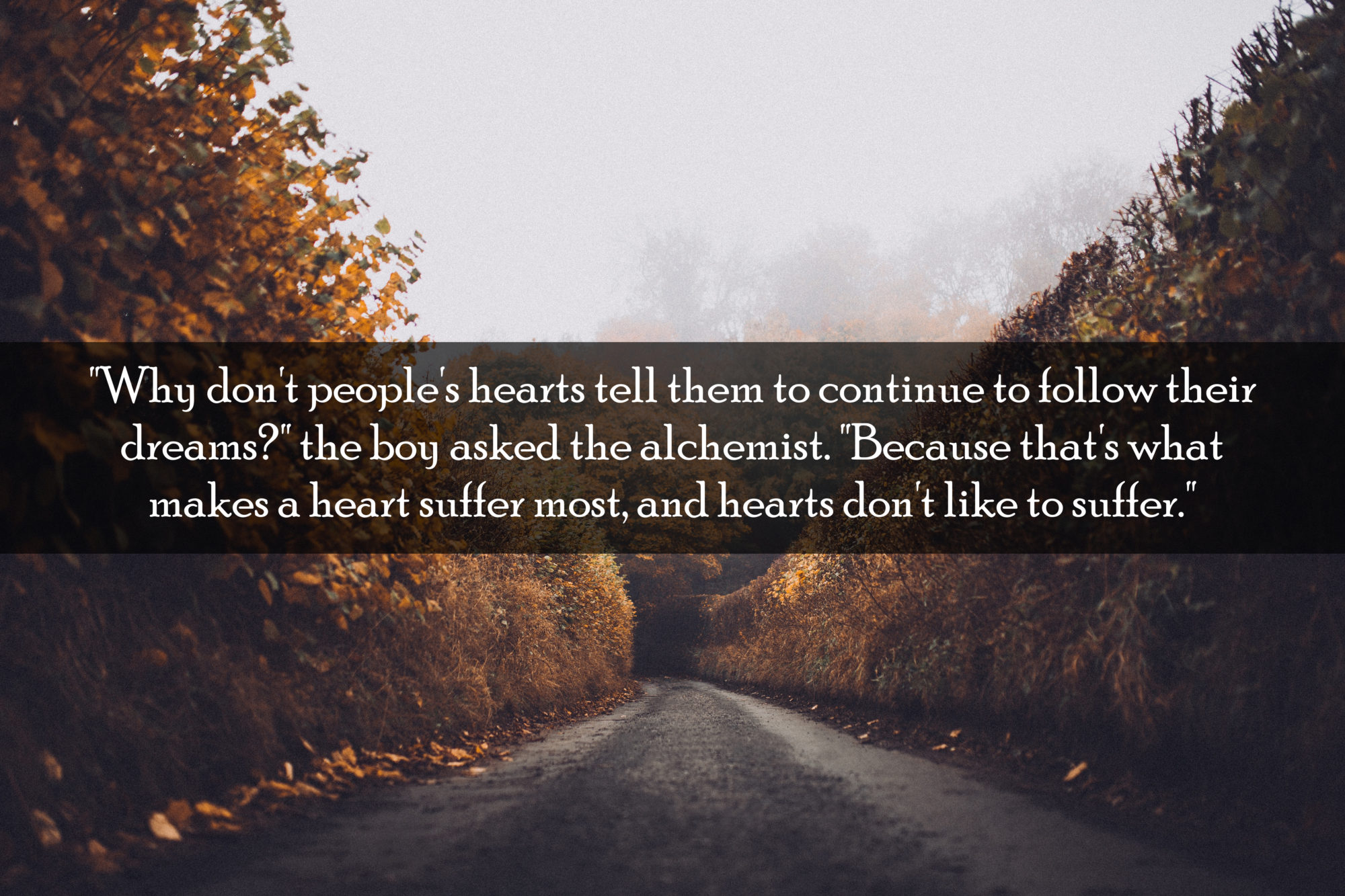 10 inspirational quotes from the alchemist by paulo coelho quotes from the alchemist 27