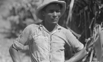 Farm laborer working in a sugar field near Guanica, Puerto Rico