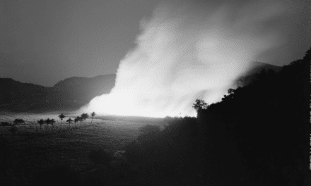 Burning a sugar cane field in Guanica, Puerto Rico. 1942