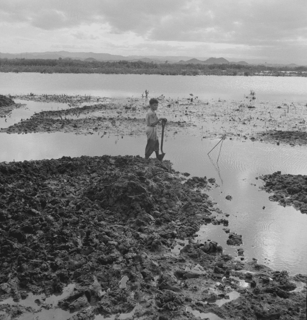 Picture of a boy shoveling mud surrounded by water.