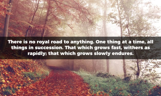 There is no royal road to anything. One thing at a time…