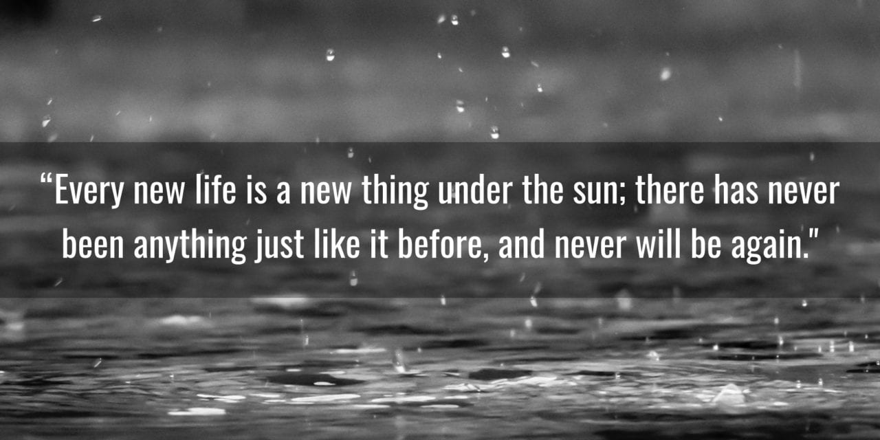 Every new life is a new thing under the sun…